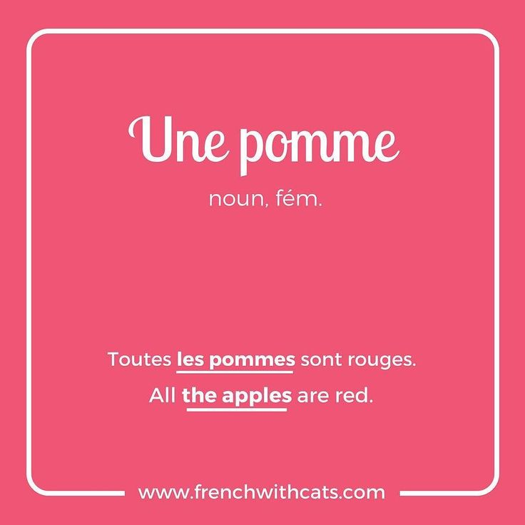 #Learnfrench in a fun way with our #French #WordOfTheDay. Today's word=une pomme=an apple. Warm apple cider anyone?
