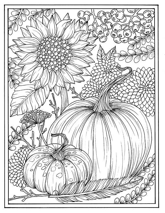 Fall Flowers And Pumpkins Digital Coloring Page Thanksgiving Mums