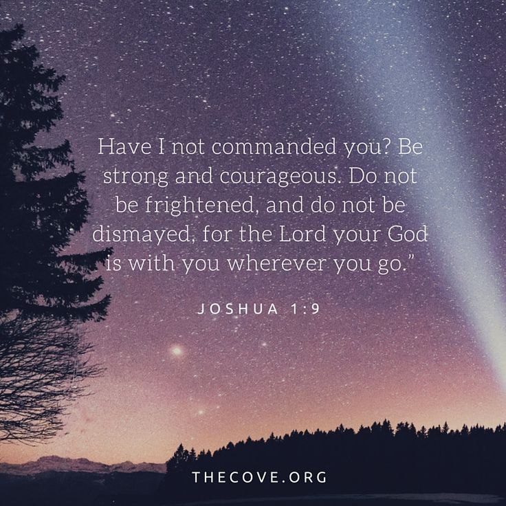 """""""Have I not commanded you?Be strong and courageous.Do not be frightened, and do not be dismayed, for theLordyour God is with you wherever you go."""" Joshua 1:9"""
