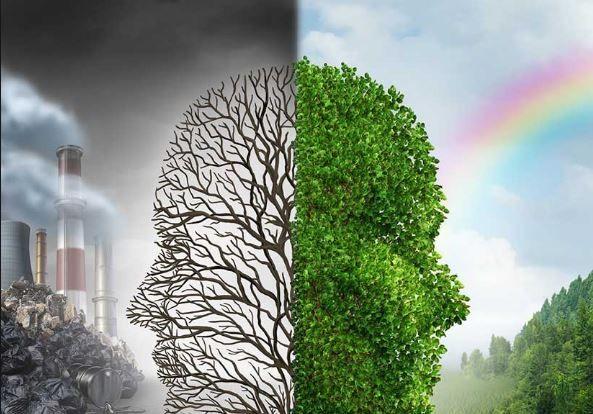 5 Cursos online de ecología y medio ambiente gratis