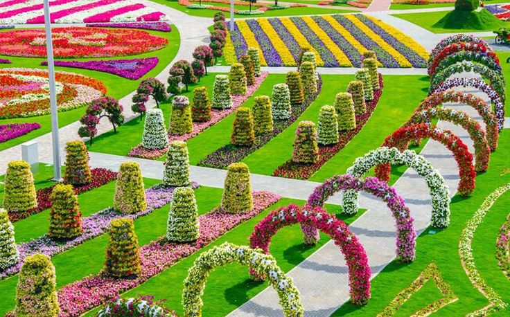 158 best DUBAI Miracle Garden images on Pinterest Miracle garden