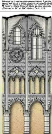 Elévation de Notre Dame de Paris. A droite : élévation tripartite. A gauche : élévation quadripartite, initialement prévue avant le remaniement de la nef en 1225, réalisée lors de la restauration de Viollet-le-duc.