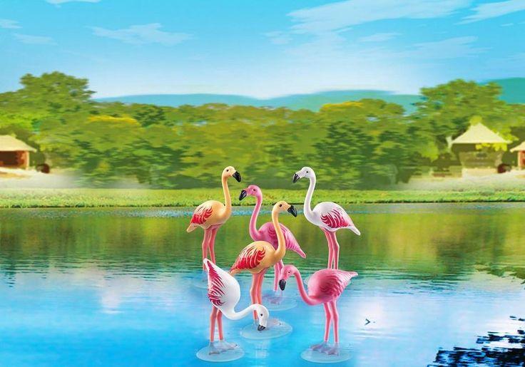 flamingos 7 euro