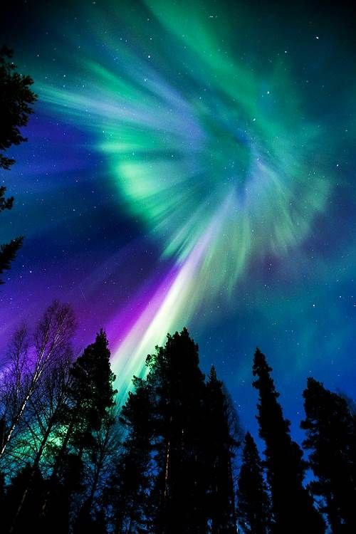 Exhibit A. Previous pinner: Aurora. Me: I'll allow that this might be how the sky actually looked that night.