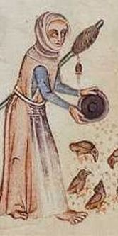 From the Luttrell psalter, p16 (ca. 1330): what I find interesting about this picture is the detail on the distaff: To me, it looks like a coiled roving wrapped spirally around the distaff