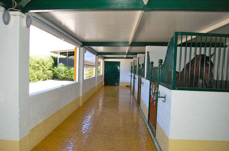 Quinta dos Cedros - Sintra | Negrais | Portugal  Studfarm for Team Pedro Torres