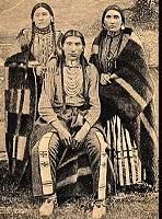 the cree indians of north america essay Causes of stereotyping american indians and check if those stereotypes are true  or  that name was later applied to all natives of the three americas, north.