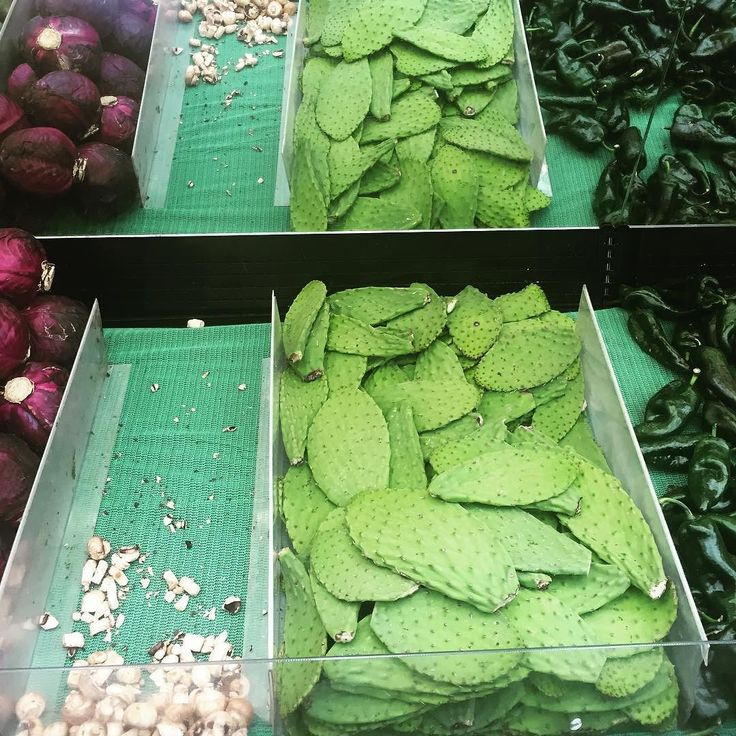 Can you get some chocolate from the supermarket... oh and some cactus?!  #cactus #food #Mexico #travel