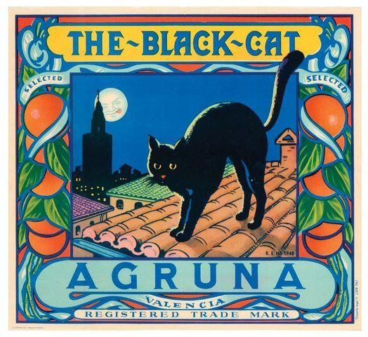 Spain The Black Cat Orange Citrus Crate Label Art Print