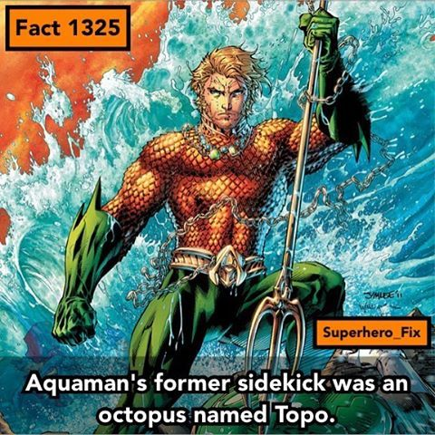 Who lives in a pineapple under the sea... - #aquaman #dc #justiceleague #youngjustice #mera #superman
