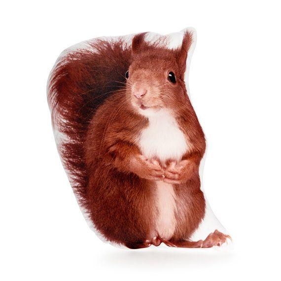 Squirrel Pillow Squirrel Cushion Woodland Decor Woodland
