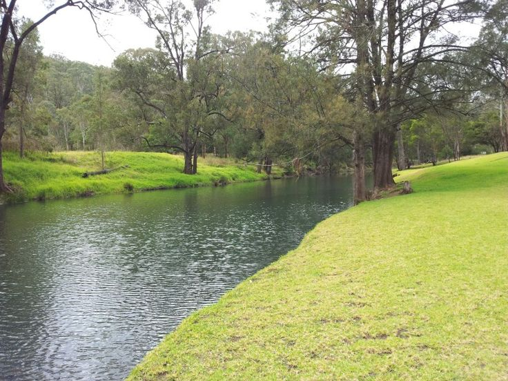 Camping at Goomburra creek