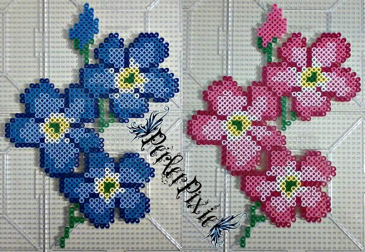 Forget-Me-Not flowers perler beads by PerlerPixie