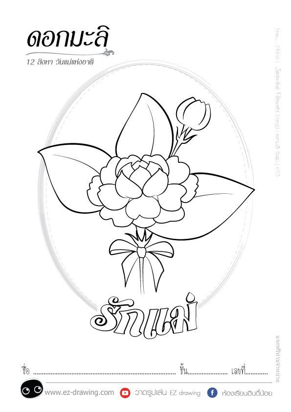 Draw Jasmine Flowers วาดร ปดอกมะล ว นแม Mother S Day ว นแม สอนวาดร ป ดอกไม