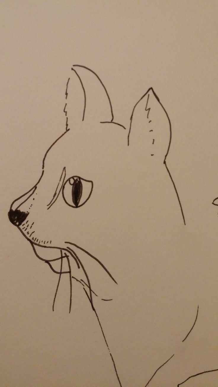 Doodlez.