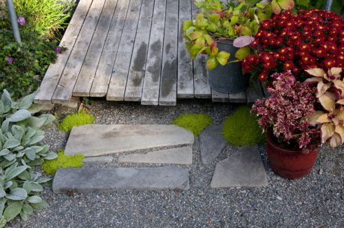 This would look great!    Upgrade a Gravel Pathway — Timber Press Talks