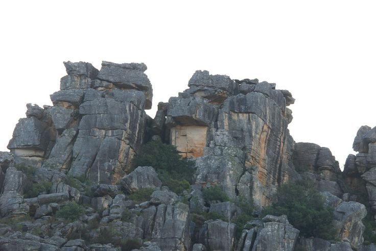 Bainskloof Pass is one of several beautiful passes in the Western Cape ...