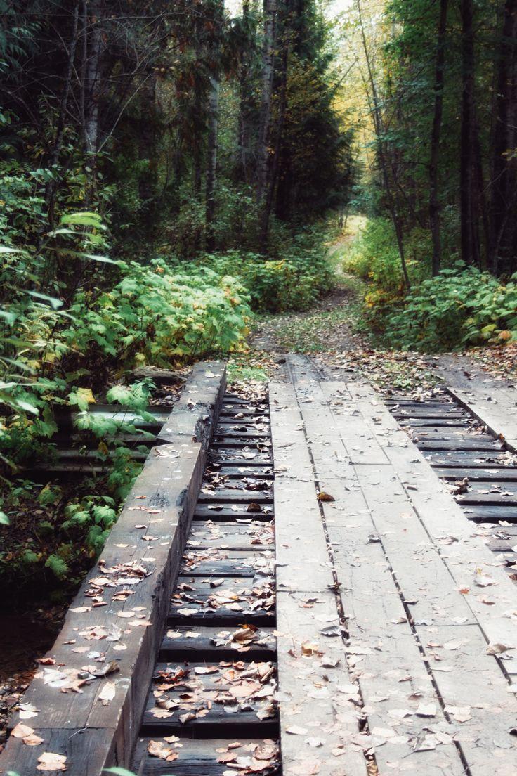 Backcountry roads Revelstoke