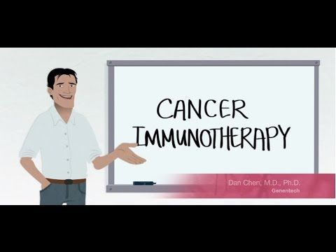 A cartoon describing PD-L1/PD-1 biology and cancer immunotherapy.