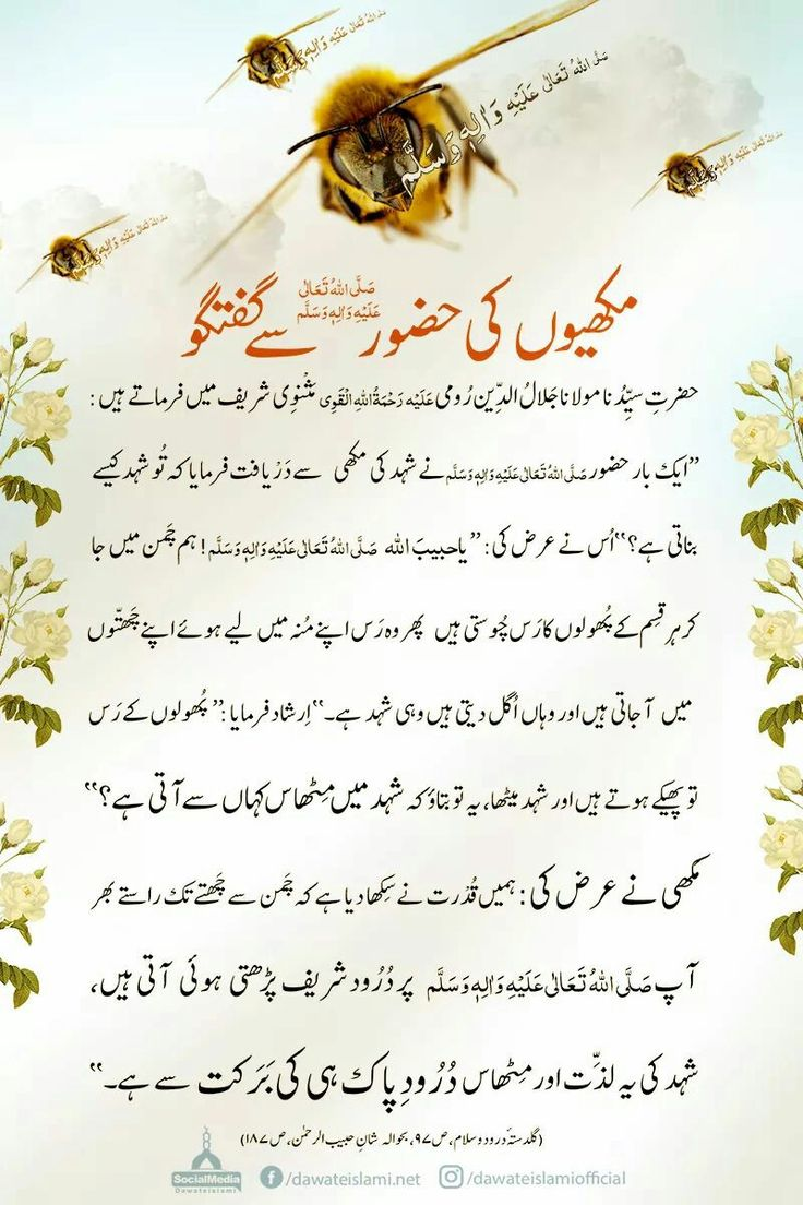 Lyrics of subhan allah