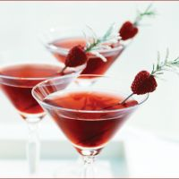 Simple & Festive Holiday Drink Garnishes {Red}