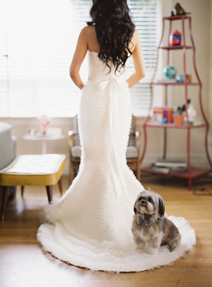 Avem cele mai creative idei pentru nunta ta!: #1328