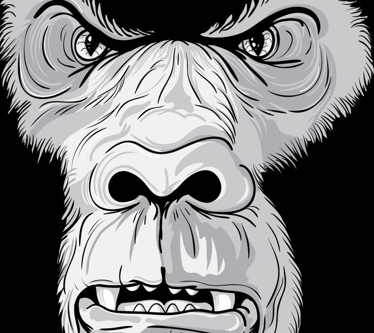silverback ape cartoon photos angry gorilla wallpaper next level pinterest photos. Black Bedroom Furniture Sets. Home Design Ideas