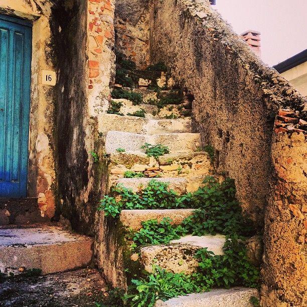 La casina dalla porta blu di Monasterace