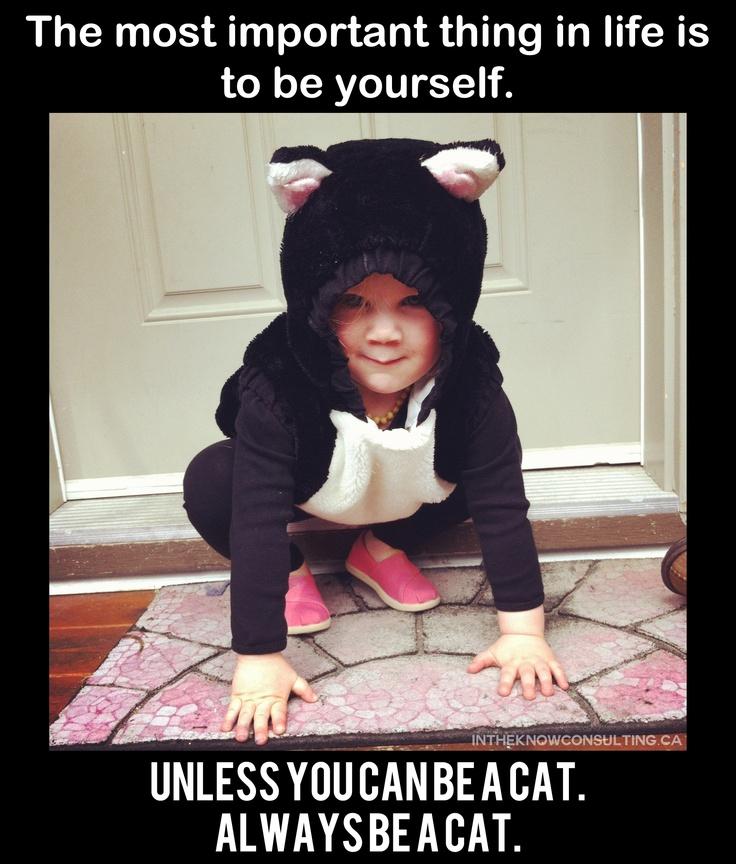meow: Parties Aristocats, Aristocats Birthday, Photo