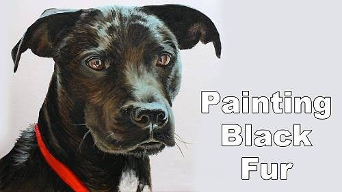 How to paint Black Fur Animals in Oil - Online Art Lessons