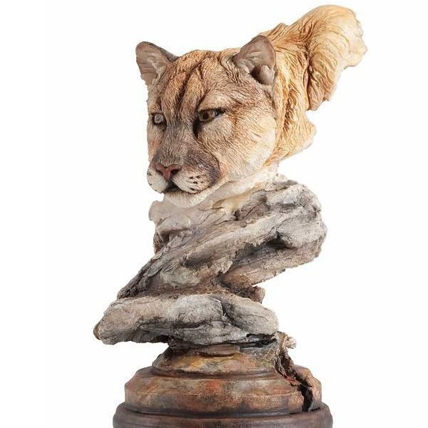 argenta cougars