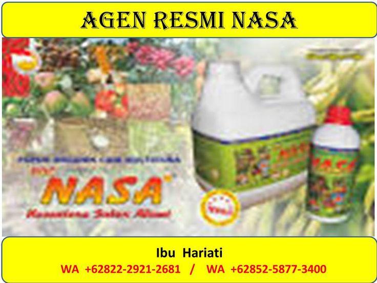 pupuk buah mangga,pupuk buah mangga agar berbuah leba,pupuk buah mangga yang bagus,Pabrik pupuk buah mangga,pupuk agar buah mangga lebat,Jual pupuk buah mangga,pupuk untuk merangsang buah mangga,pupuk perangsang buah mangga,Jenis pupuk buah mangga,pupuk penguat buah mangga,Agen pupuk buah mangga  Untuk informasi produk silakan hubungi  Ibu Hariati WA +62822-4450-6179