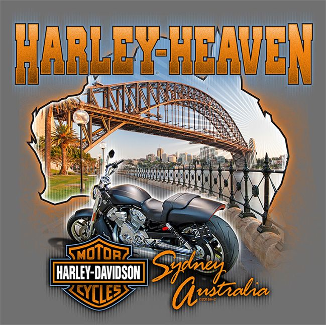 Pin By John Duran On Hd Dealers Harley Davidson Artwork Harley Davidson Merchandise Harley Davidson Art