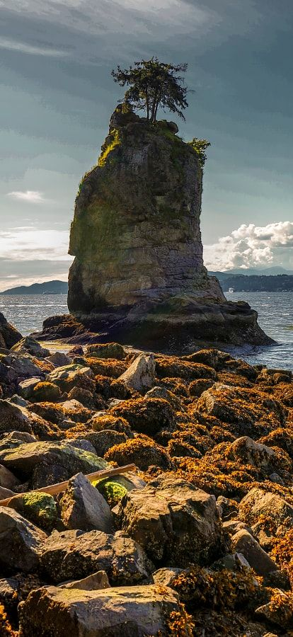 Siwash Rock (Stanley Park, Vancouver, BC) by Mark Bowen  / 500px