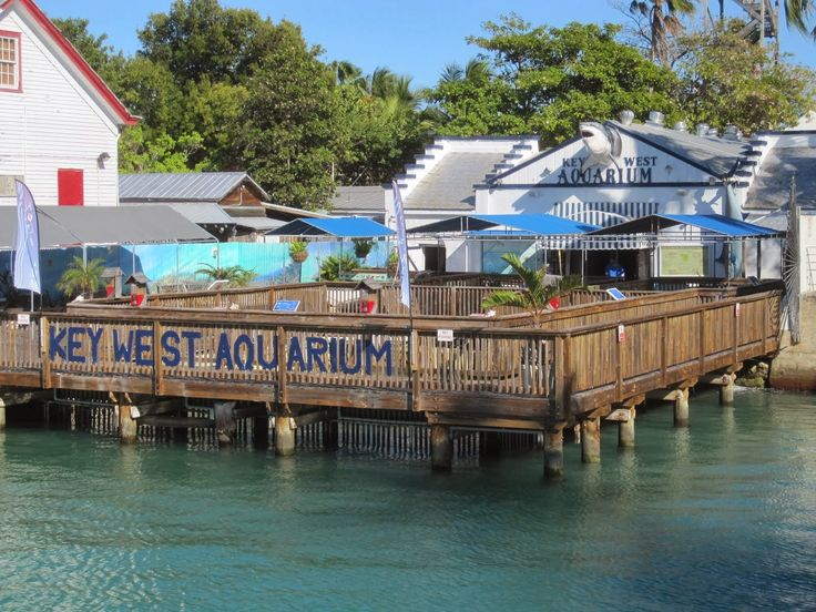 Party in Key West: TOP 10 Things to Do In Key West