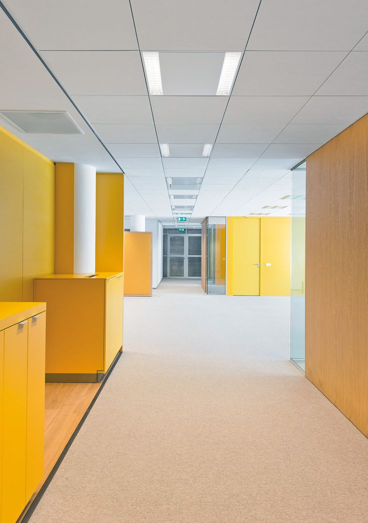 Techstyle® suspended ceiling systems establish a clean, monolithic look, while also offering outstanding acoustical performance, easy access to the plenum, easy installation and long-term durability.