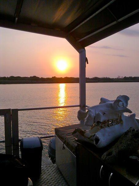 Shoreline Hippo and croc boat safaris photo taken by Janine Siedle