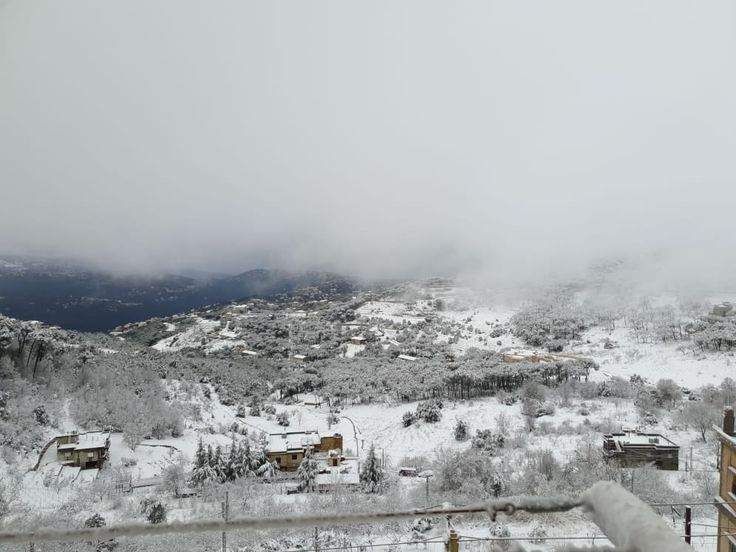 Pin On اخبار لبنان