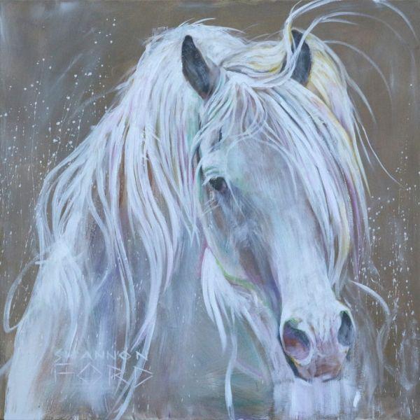 Shannon Ford Cavalos Pinterest Cavalo