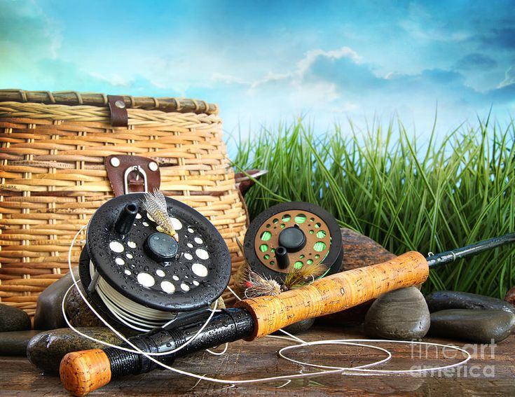 1000+ ideas about fishing equipment for sale on pinterest | rod, Fishing Reels