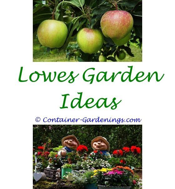 annuals flower garden ideas - herb garden planter ideas.indoor cat garden ideas long narrow garden bed ideas garden tips for under an oak 1234750612