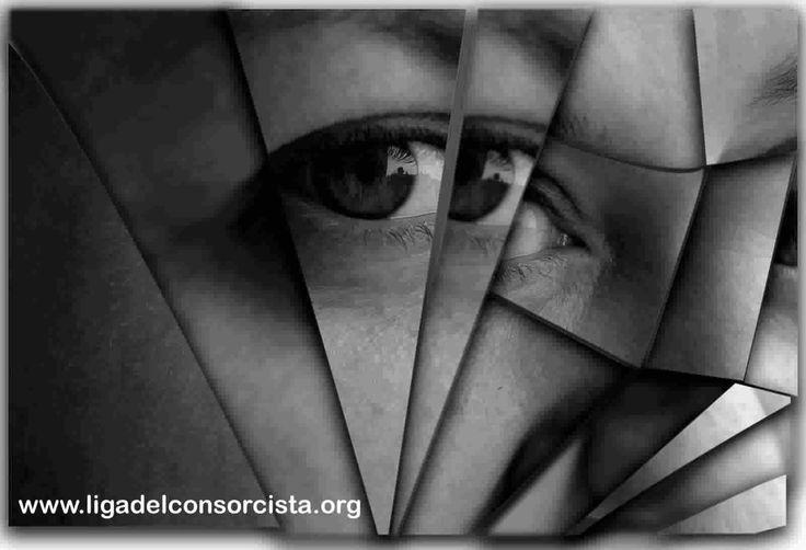 EL CONSORCIO DE PROPIETARIOS, REFLEJO DE LA SOCIEDAD EN QUE VIVIMOS?  Es común observar (con honrosas excepciones por supuesto) falta de respeto, desprecio a la opinión ajena, falta de solidaridad e ignorancia acerca de lo que significa compartir un edificio. Esto se observa en propietarios, inquilinos, meros ocupantes y también en quien administra el patrimonio común. [...] http://www.ligadelconsorcista.org/el-consorcio-es-reflejo-de-la-sociedad-en-que-vivimos
