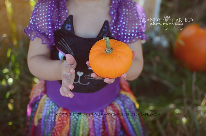 Pumpkin Patch. Denver Colorado Children's Halloween Fall Mini Sessions. Denver's Child Photographer. Brandy Caruso Photography.