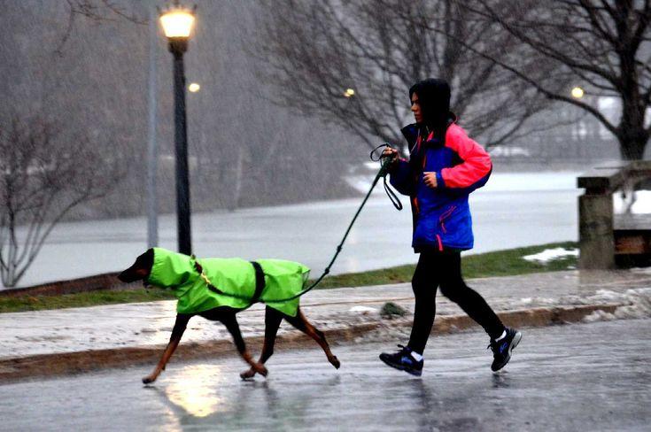 Cleveland, OH Weather Forecast, Radar & News