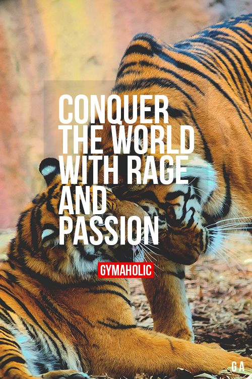 Conquer The World With Rage And Passion You deserve great things, you don't know it yet. http://www.gymaholic.co