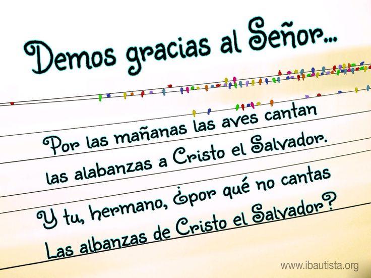 Demos gracias al Señor #demos #damos #gracias #Señor #aves #cantan #alabanzas #Cristo #Salvador #www.ibautista.org