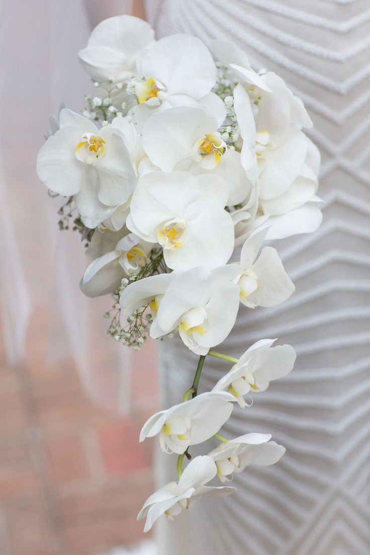best orchids wedding flowers images on pinterest beautiful