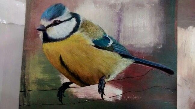 Wildlife art, original Bluetit painted with gouache and acrylic by Karolina Czerwinska