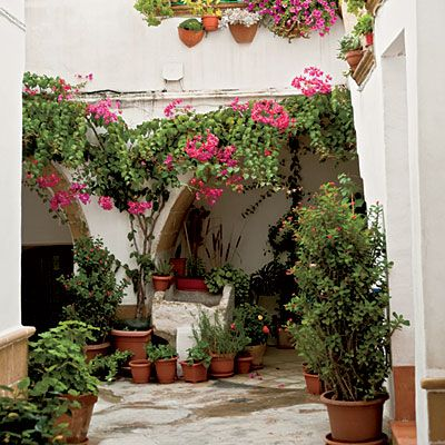 Beautifully groomed courtyard gardens brimming with bright bougainvillea, fragrant lemon trees, and blooming cacti