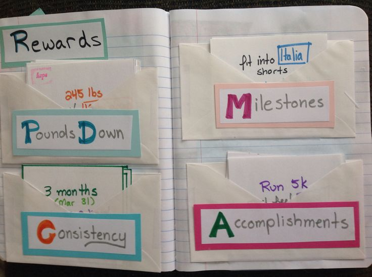 megina s weight loss diary book